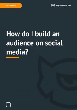 How do I build an audience on social media?