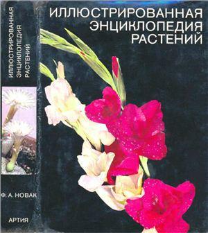 Иллюстрированная энциклопедия растений
