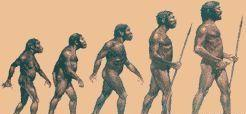 История людей