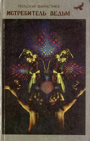 Истребитель ведьм (сборник)