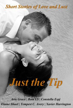 Just the Tip: Short stories of love and lust