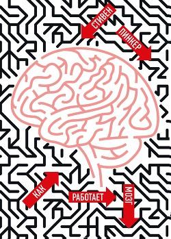 Как работает мозг.