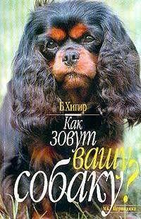 Как зовут вашу собаку