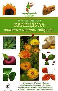 Календула – золотые цветки здоровья