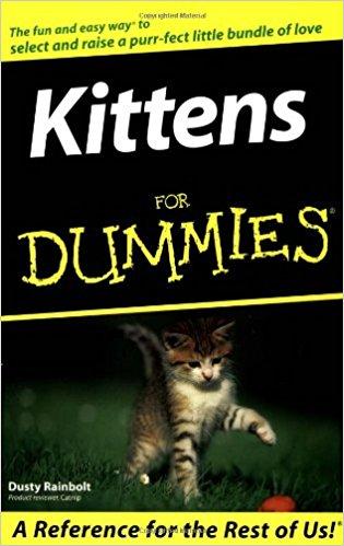 Kittens For Dummies®