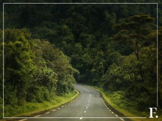 Короткая дорога