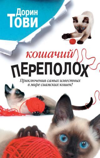 Кошачий переполох [сборник, litres]