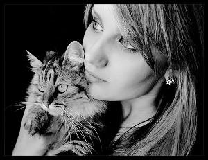 Кошка с сюрпризом (СИ)