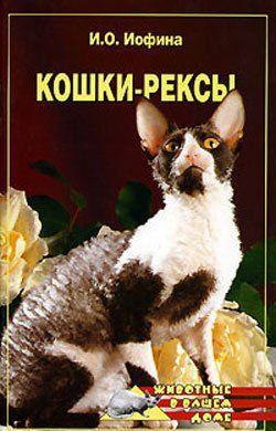 Кошки – рексы