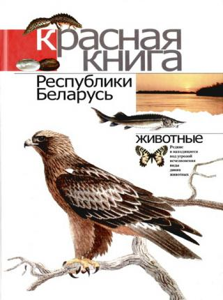 Красная книга Республики Беларусь: Редкие и находящиеся под угрозой исчезновения виды диких животных