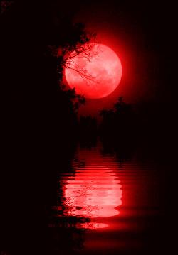 Кровавые слезы луны