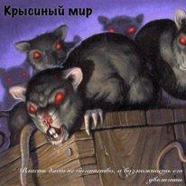Крысиный мир (СИ)