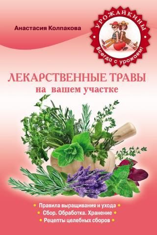 Лекарственные травы вашем на участке
