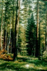 Лес - кормилец