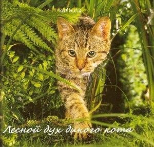 Лесной дух дикого кота (СИ)