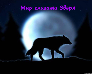 Мир глазами зверя (СИ)