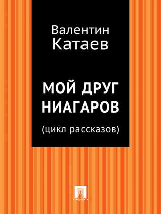 Мой друг Ниагаров