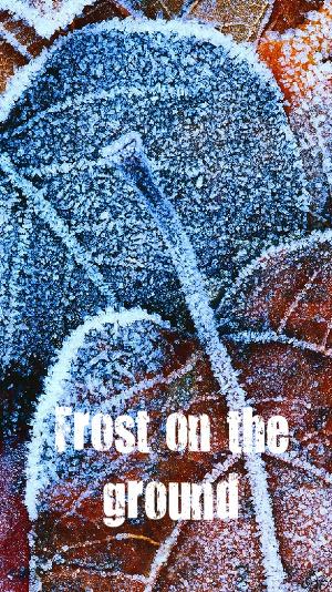 Мороз на земле (СИ)
