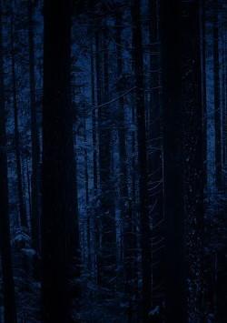 Nacht (СИ)
