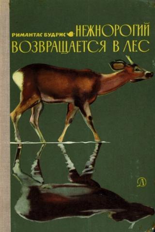 Нежнорогий возвращается в лес [Maxima-Library]