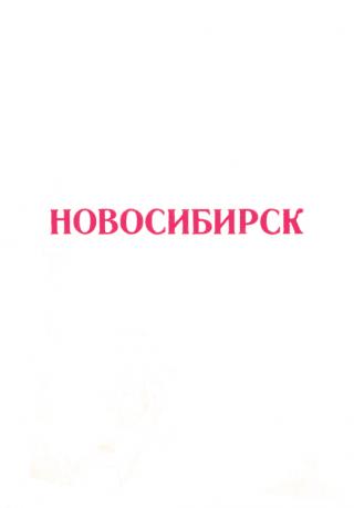 Новосибирск 1917-1975 (Справочный материал)