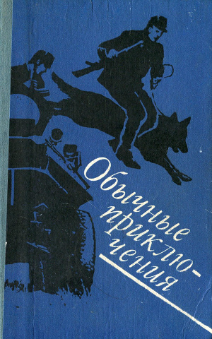 Обычные приключения (сборник)
