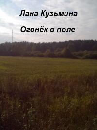 Огонёк в поле (СИ)