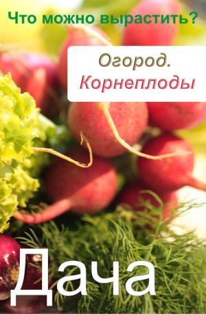 Огород. Корнеплоды. Что можно вырастить?