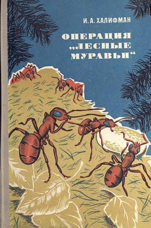 """Операция """"Лесные муравьи"""