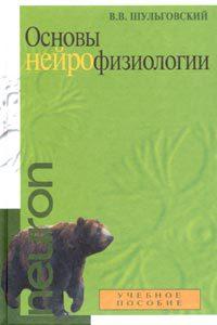 Основы нейрофизиологии