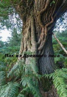 Пак из Древнего леса (СИ)