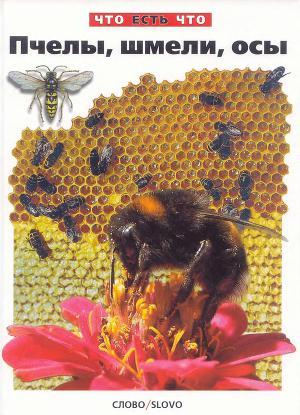 Пчелы, шмели, осы