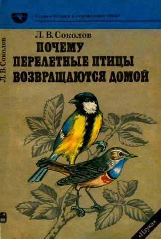 Почему перелетные птицы возвращаются домой