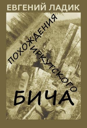 Похождения иркутского бича
