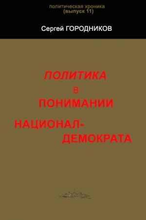 ПОЛИТИКА В ПОНИМАНИИ НАЦИОНАЛ-ДЕМОКРАТА