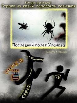 Последний полёт Уланова (СИ)