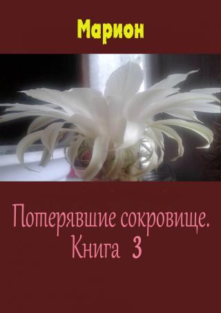 Потерявшие сокровище. Книга 3 (СИ)