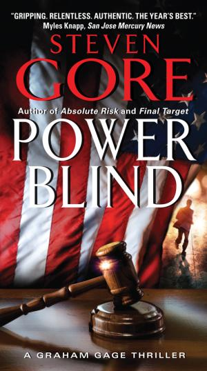 Power Blind