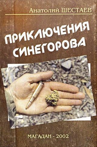 Приключения Синегорова