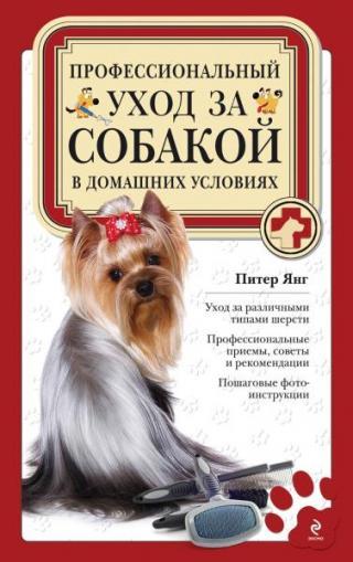 Профессиональный уход за собакой в домашних условиях