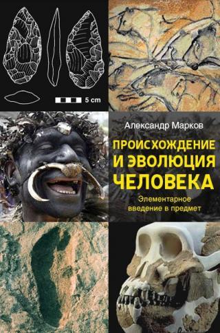 Происхождение и эволюция человека. Доклад в Институте Биологии Развития РАН 19 марта 2009 г.