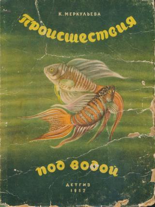 Происшествия под водой