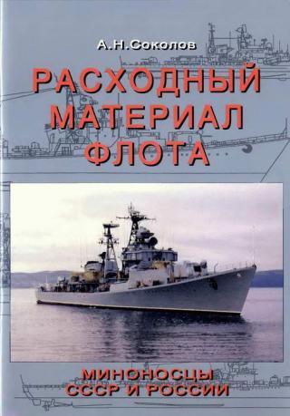 Расходный материал флота. Миноносцы СССР и России