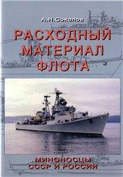 Расходный материал советского флота. Миноносцы СССР и России