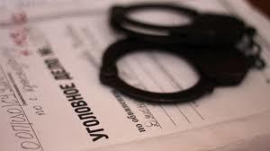 Расследования Дениса Будова. Книга первая (СИ)