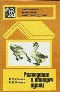 Разведение и откорм гусей