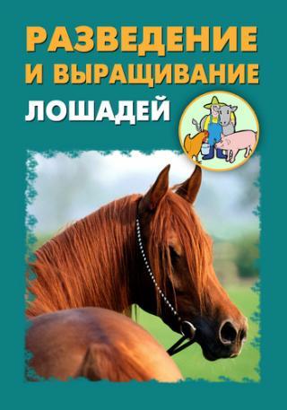 Разведение и выращивание лошадей