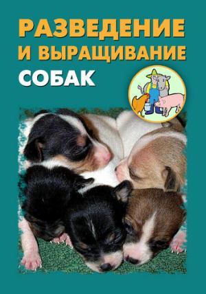 Разведение и выращивание собак
