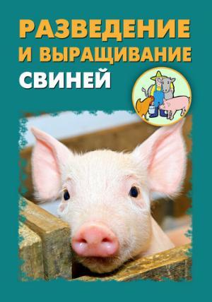 Разведение и выращивание свиней