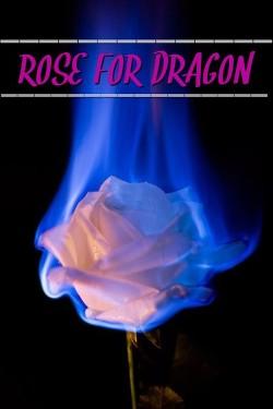 Роза для дракона (СИ)